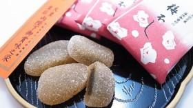 土佐藩初代藩主「山内一豊」も愛し人気&美味しい高知土産『梅不し』